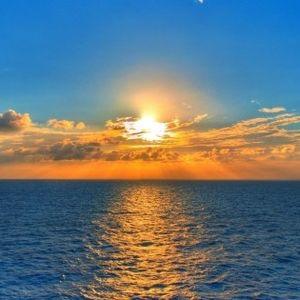 Shimmering Sunshine