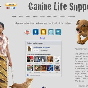 Canine Life Support - helping stray dogs in Sri Lanka