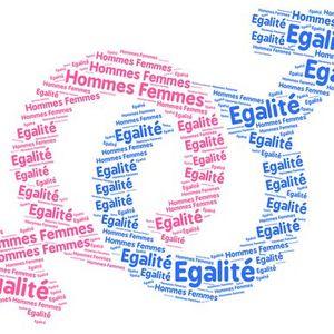 TPE, le système educatif francais renforce-t-il les stéréotypes de genre? (16 jan 2019)