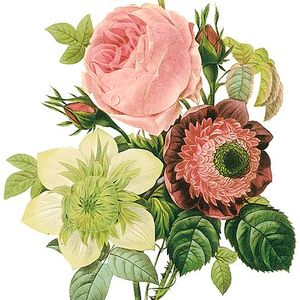 "Marsha's ""Flowers In The Mix"" ||Radio Rooms|| 18-01-14 (prt.1)"