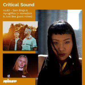 Critical Sound no.83 - Sam Binga & Hyroglifics (w/ HomeSick & Just Bee guest mixes)   07.10.2020
