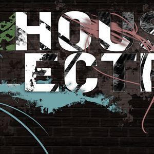 Electro/House 2013