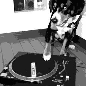 Eine halbe Tüte Musik, Bitte!