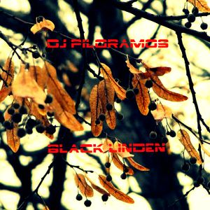 Dj Piloramos - Black linden