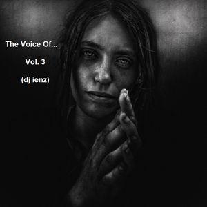 The Voice Of...Vol. 3 (dj ienz)