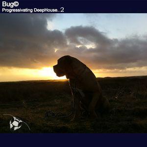 Bug© - Progressivating DeepHouse II (Sunday Session 2013-06-29 )
