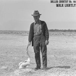 Dollar Country Episode 116:  Walk Lightly