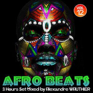 Afro Beats (Vol 12)