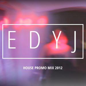 House Promo Mix 2012