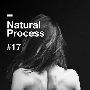 Natural Process #17