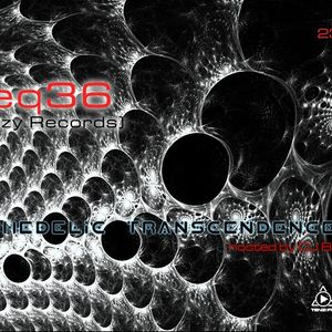 TPTRB - 23DEC13 - Freq36