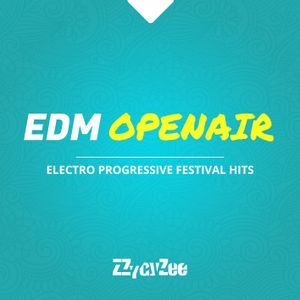 EDM Open Air - Electro Progressive Festival Mix 2012