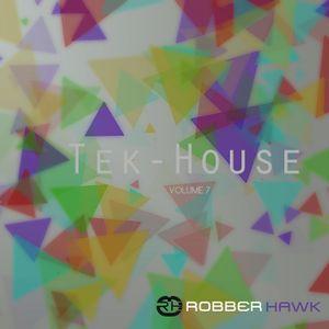 Robber Hawk - Tek-House Vol. 7
