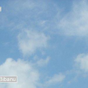 ElectRo Exclusives No. 009: Bibanu - Hibernetik Session Mix