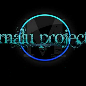 MaLu Project - Best Of In-The-Mix (Mixed By Mikie B)