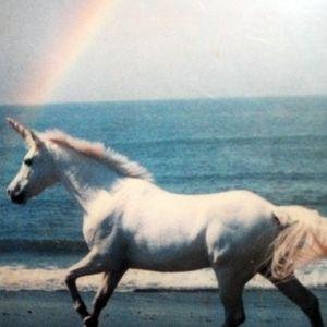 Somewhere Over The Rainbow ep.11