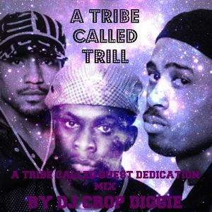 A TRIBE CALLED TRILL: A TRIBE CALLED QUEST DEDICATION MIX BY DJ CROP DIGGIE