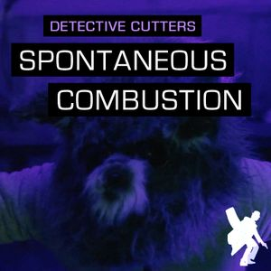 Detective Cutters - Spontaneous Combustion