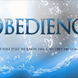 Phases of Obedience