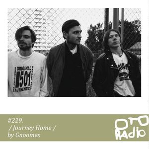 #229. GNOOMES - Journey Home