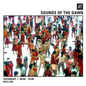 Sounds of The Dawn - 15th October 2016