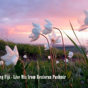 DJ Oleg Fiji - Live Mix Restoran Pashmir 20.04.2012