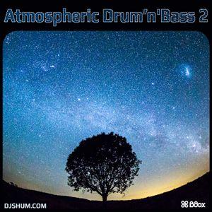 DJ SHUM - Atmospheric drum'n'bass #2