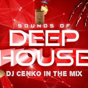 Dj cenko® fresh mix deep house ( summer part 3 2014) [VLORE]