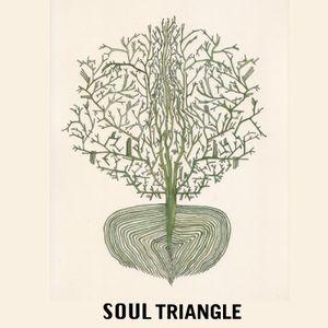 SOUL TRIANGLE - DEEP HOUSE MIX