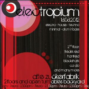 BlacKSharK@Electropium 18.08.2012