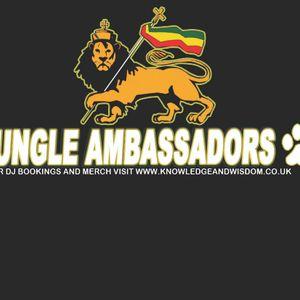 Jungle Ambassadors set Koollondon 11-8-12 Dj Souljah & Ras Ranger