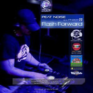 Peat Noise - PN201111 - Flash Forward