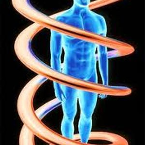 Danyel - DNK Analiza