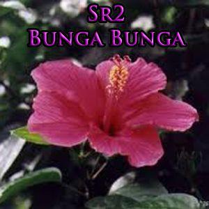 SbatRadio2 - IV - BUNGA BUNGA
