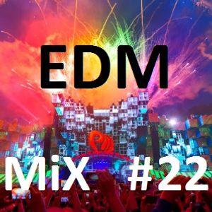 EDM Mix #022