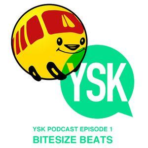 Podcast Episode 1 - Bitesize Beats