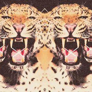 UNLEASH THE TIGER (NOVEMBER MIX)