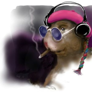 Marvin Hamster Music Emporium - 123 - 3 - Guru Cats Set