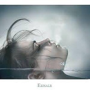 Exhale 17 - Oxigenate b2b Sour D