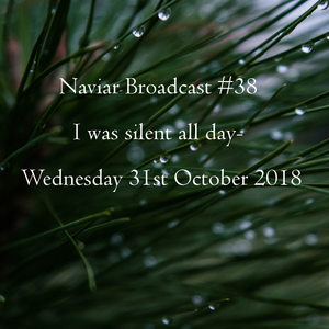 Naviar Broadcast #38 – I was silent all day - Wednesday 31st October 2018