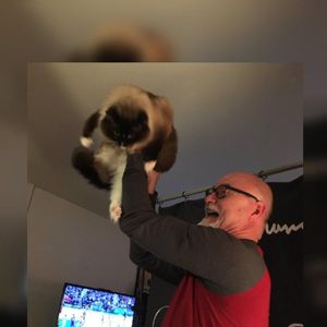 We've raised the cat tonight! #BrunoNation 01/25