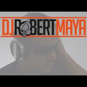 DJ Robert Maya feat. Various Artists - House/Dance Remix