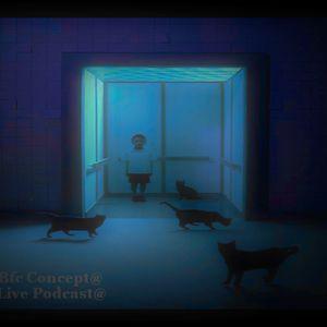 (Bfc Concept) Live Mix @ ( Sonja de Nada)_(2013)