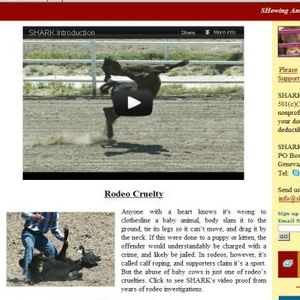 Rodeo Cruelty - the truth  behind the myth