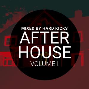 HARD KICKS - After House Vol I