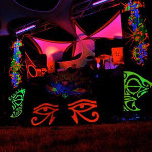 Vine @ 1200m Electronic Culture Music Festival 2012 (2-8-2012)