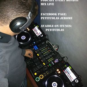 Petitcolas in the mix 32