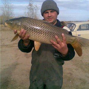 Max Rider - The fish day [FF129] '(31.03.11)
