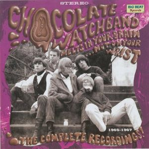Band Feature: The Chocolate Watchband - Part 1