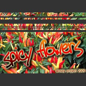 spicy flowers